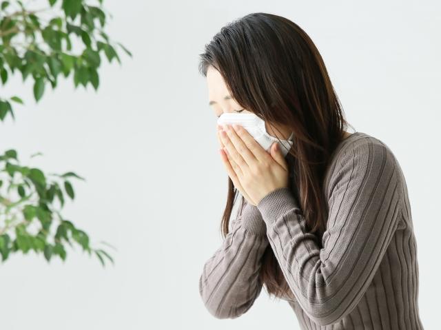 体調を崩しやすい季節だから。天然の抗菌作用が期待できる食品「プロポリス」お試しください。