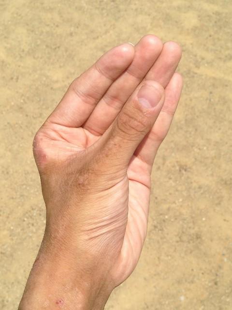 hand-1582527_1280