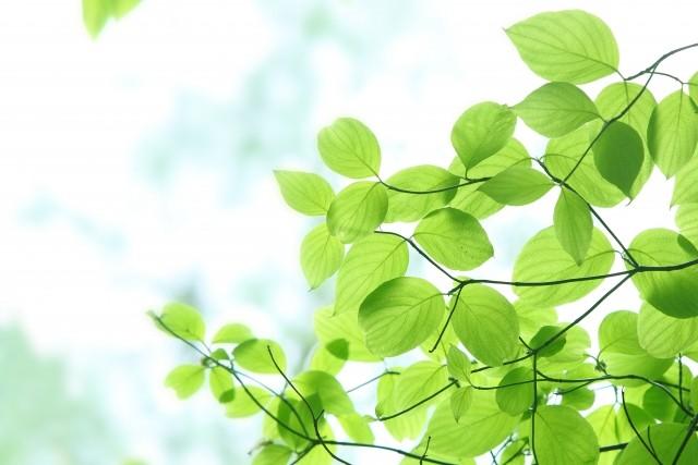 「環境汚染防止整備」に取り組んでいます。