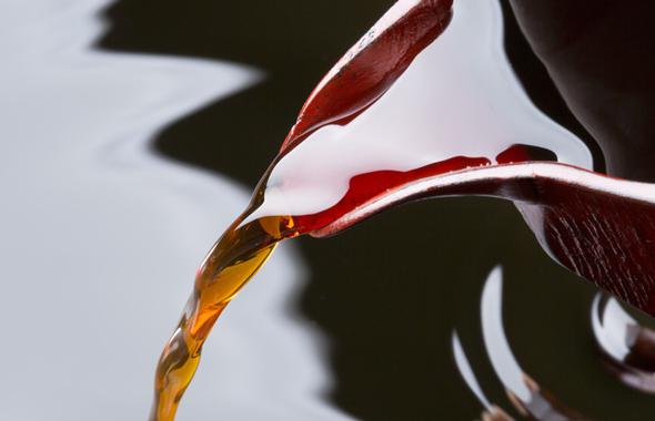 いつものお醤油に新しい風味を加える燻製しょうゆ