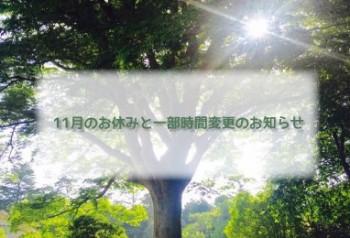 cafe_tree