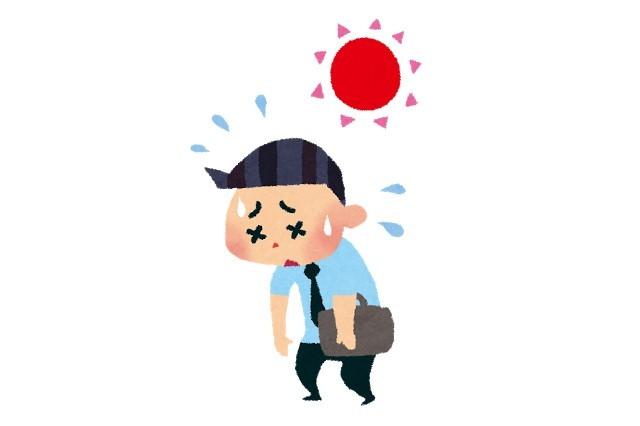 ミネラル不足が現代病・生活習慣病の原因(2)