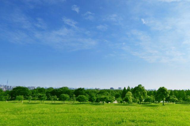 個人から企業用地まで草刈工事なら鈴木工業へ