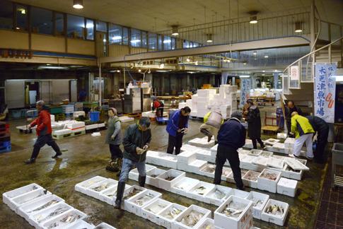 木更津魚市場の部門紹介