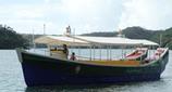 自然観察船