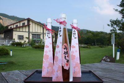 梅林公園産の梅100% 梅ジュース「うめじゅ」