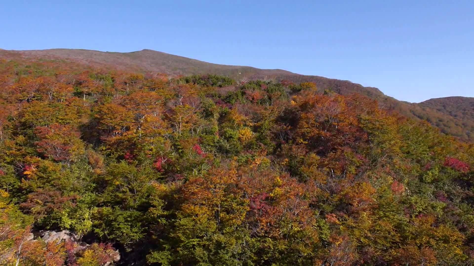 秋の栗駒山(空撮)