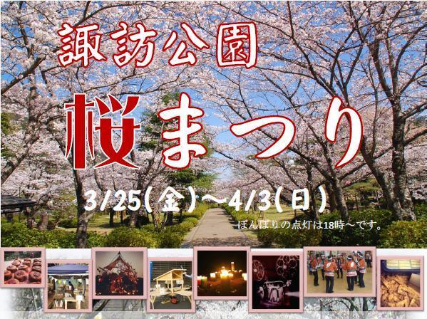 shikoku-miyoshi-sakura002