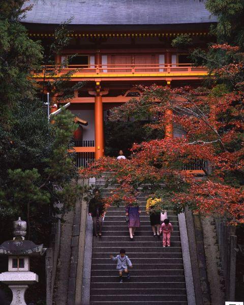 金刀比羅神社(紅葉)