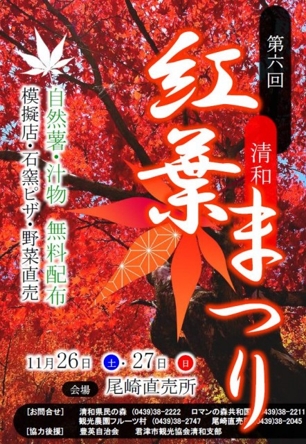 kimitsu-momiji001