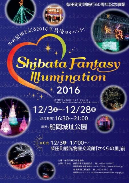 shibata-illumi001