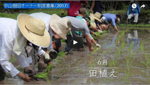 中山棚田オーナー制度募集(2017)
