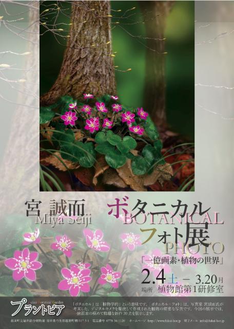 h29-02-04_botanical