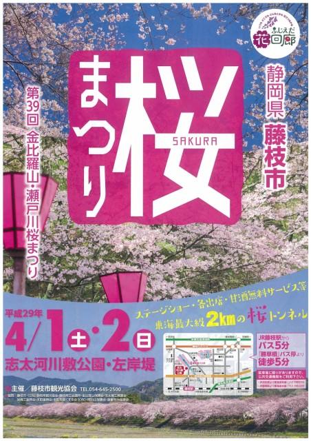 東海最大級2kmの桜トンネル「金比羅山・瀬戸川桜まつり」開催!