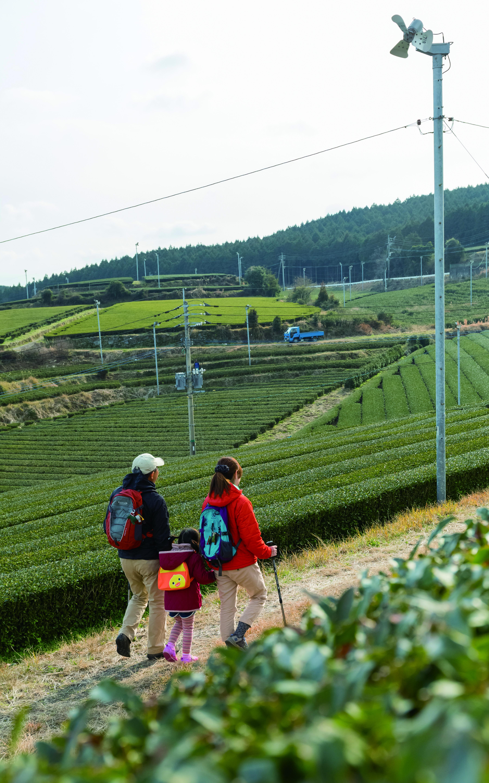 九州オルレ嬉野コース