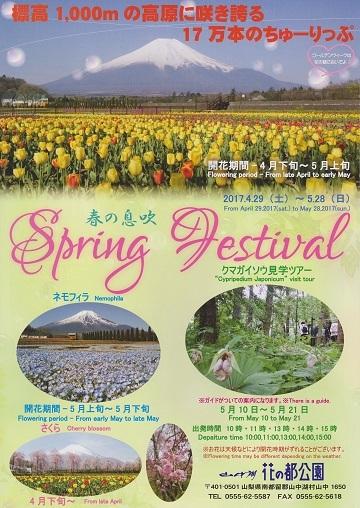 【春のイベント】 春の息吹