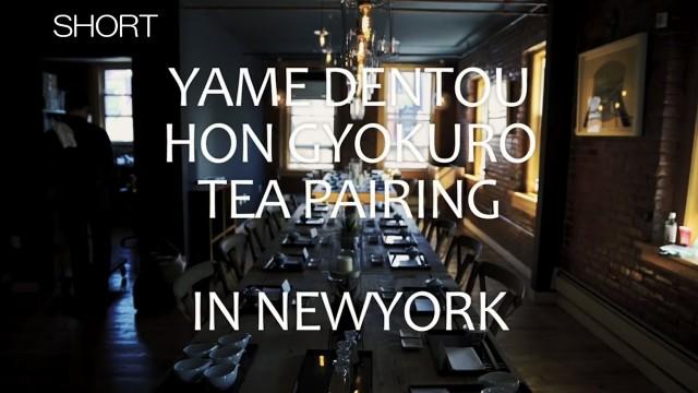 八女伝統本玉露 「Traditional Authentic YAME GYOKURO」 ショートバージョン
