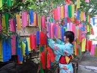 ピクニック観光特集☆初夏の風物詩「都立庭園の七夕飾り」