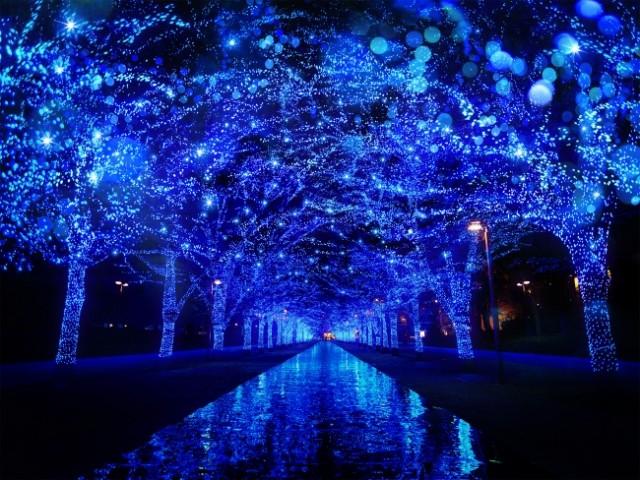 イルミ・秋冬イベント特集☆2017年「青の洞窟 SHIBUYA」