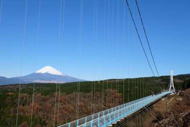 地上70mからひと際美しい冬富士を望む