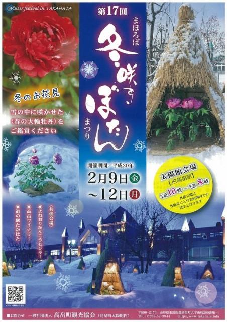 街に広がる白と赤のコントラスト「第17回まほろば冬咲きぼたんまつり」開催!