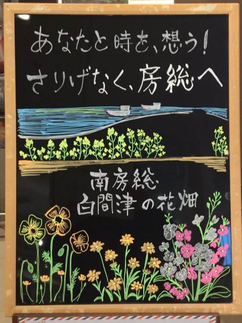 一足早い春を迎える南房総「白間津の花畑」
