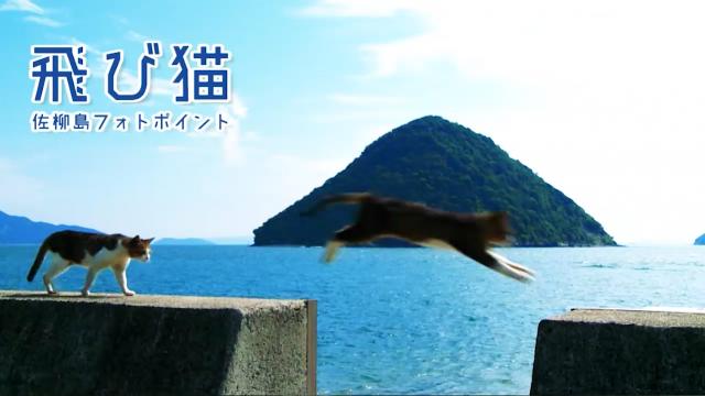 05佐柳PV スロー