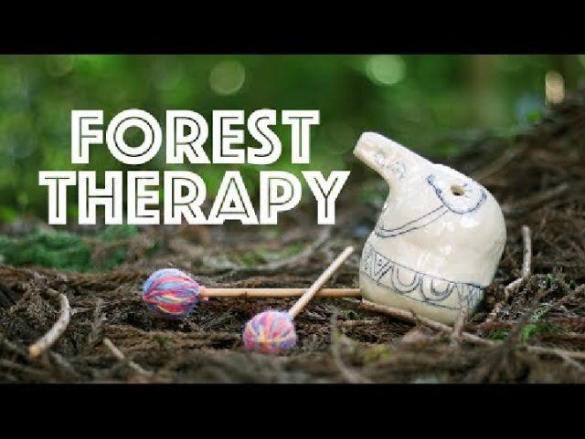 【本巣市PR動画】FOREST THERAPY【NEO】