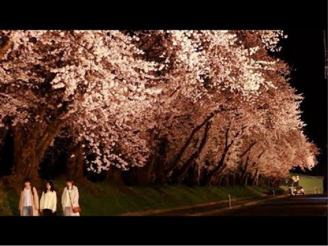 【高畠町PR】「流れる春の日々」