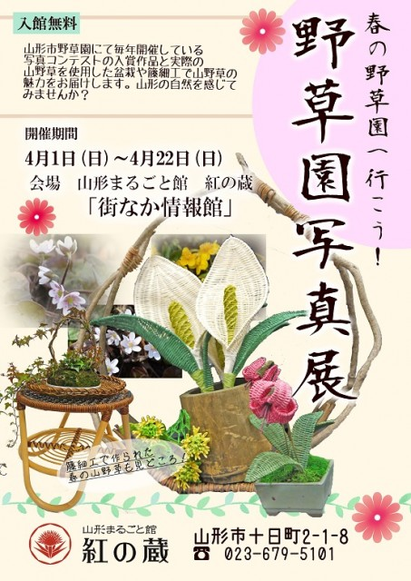 お花見・イベント特集☆春の野草園へ行こう! 野草園写真展 4月の十日市
