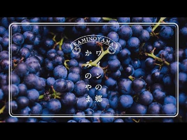 【山形県上山市PR動画】ワインの郷 かみのやま
