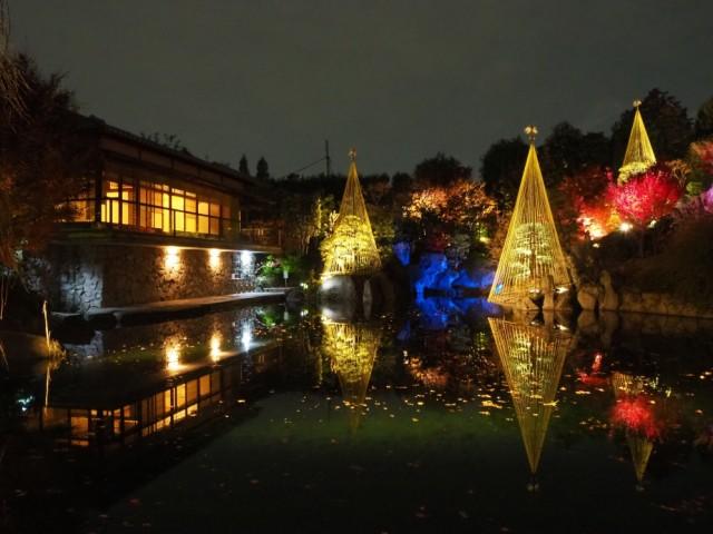 幻想的な庭を楽しむ「秋の庭園ライトアップ」・東京都豊島区