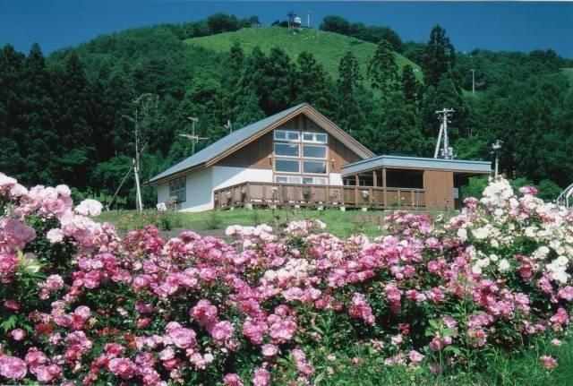 50品種・5,000本のバラが咲き誇る「しちのへバラまつり」・七戸町